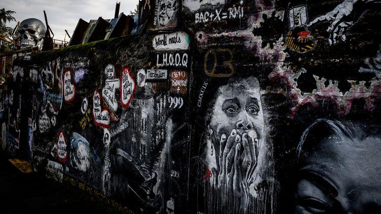 Un des murs de la Demeure du Chaos de Thierry Ehrmann sise dans le village deSaint-Romain-au-Mont-d'Or près de Lyon, le 25 novembre 2019. (JEAN-PHILIPPE KSIAZEK / AFP)