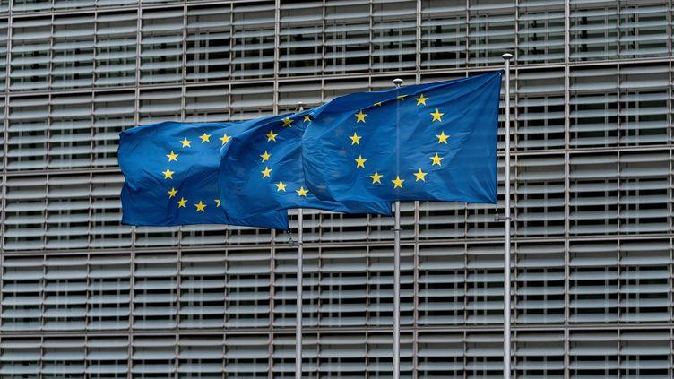 La Commission européenne a autorisé, le 9 décembre, uneaide publique pour un consortium chargé de fabriquer des batteries électriques. (KENZO TRIBOUILLARD / AFP)