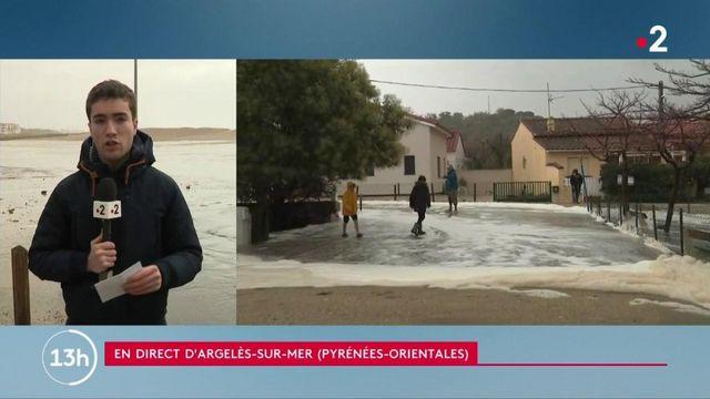 Pyrénées-Orientales : le département maintenu en vigilance orange en raison de la tempête Gloria