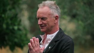 """Ancien leader du groupe Police, Sting dévoile un nouveau morceau. La série """"Culte !"""" du 20 heures de France 2 revient sur le parcours de cet artiste très populaire en France. (France 2)"""