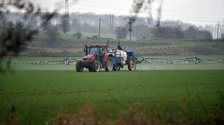 Un agriculteur pulvérise des pesticides sur un pâturage àAulnoy-lez-Valenciennes (Nord), le 23 janvier 2020. (MAXPPP)