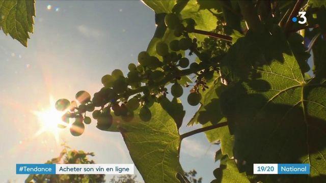 #Tendance : le boom de l'achat de vin en ligne