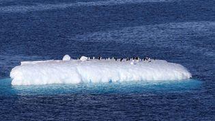 Un iceberg en Antarctique, le 15 février 2019. (XINHUA / AFP)