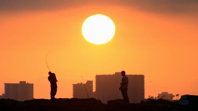 Des pêcheurs à Seal Beach, en Californie (Etats-Unis), en juin 2014. (FREDERIC J. BROWN / AFP)