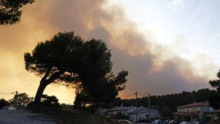 Des épaisses nuées de fumée étaient visibles dans le ciel d'Aubagne (Bouches-du-Rhône), le 19 août 2017. (FREDERIC SEGURAN / CITIZENSIDE)
