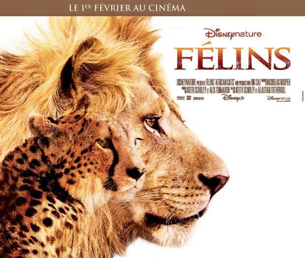 L'affiche du film  (Disney Nature)