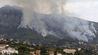 Quelque 50 hectares de végétation sont partis en fumée, mercredi 9 septembre 2015, à Menton (Alpes-Maritimes). (VALERY HACHE / AFP)