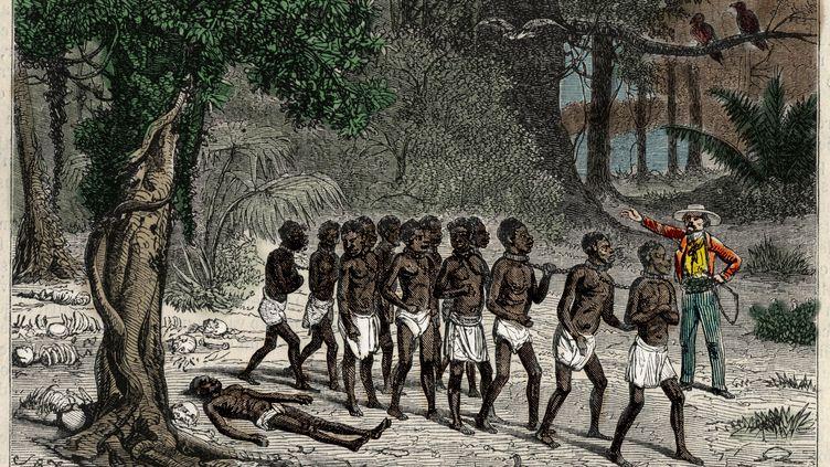 """Colonne d'esclaves. Gravurepour le livre """"Aventures au pays des gorilles"""" de Paul Belloni Du Chaillu, """"L'Univers illustre"""", 1868. (AFP - Bianchetti/Leemage)"""