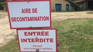 Une aire de décontamination contre la grippe aviaire sur un élevage, le 13 octobre 2018. (LAURENT MINVIELLE / FRANCE-BLEU GASCOGNE)