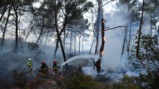 Des pompiers éteignent un incendie dans les Bouches-du-Rhône, le 10 août 2017. (BERTRAND LANGLOIS / AFP)