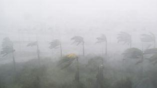 Dix jours après Irma, les Antilles sont de nouveaux frappées par un ouragan. (SAUL LOEB / AFP)