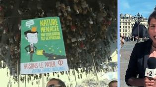 Marche pour le climat (France 2)