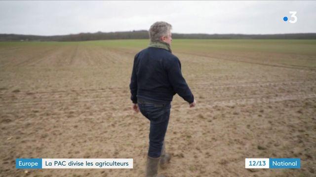 Europe : la PAC divise les agriculteurs