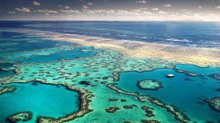 Des chercheurs australiens tentent de lutter contre une espèce d'étoile de mer qui ravage la Grande barrière de corail (Illustration). (FELIX MARTINEZ / MOMENT RF / GETTY)