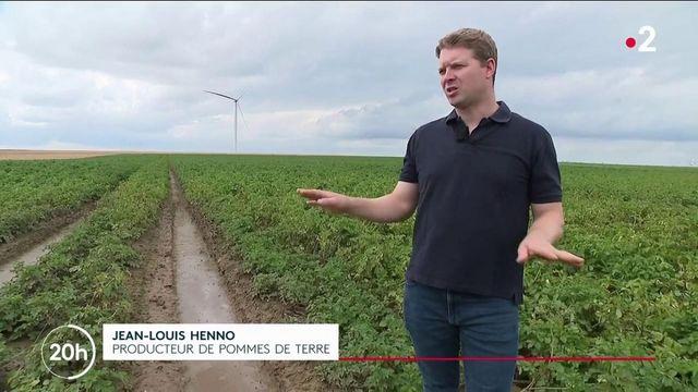 Agriculture : la météo pluvieuse est une catastrophe pour les récoltes