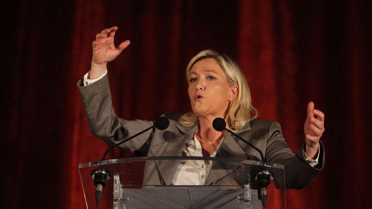 La présidente du Front national, Marine LePen, lors d'un meeting à Hénin-Beaumont, le 25 mars 2015. (MICHEL SPRIGLER / AP / SIPA)