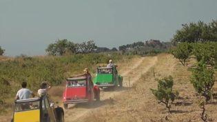 Des touristes visitent le domaine du Fitou dans l'Aude. (FRANCE 2)