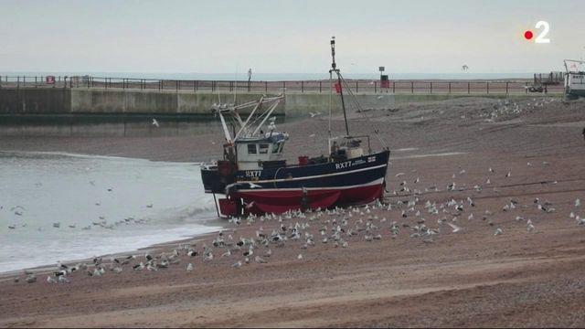 Brexit : l'accord laisse un goût amer pour les pêcheurs britanniques
