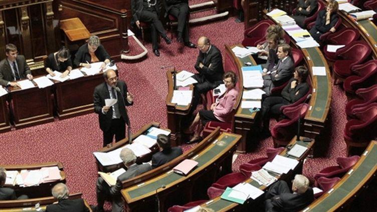 Le ministre du Travail Eric Woerth s'adresse aux sénateurs, le 11 octobre 2010. (AFP - Jacques Demarthon)