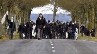 Des militants antinucléaire défilent à Mandres-en-Barrois (Meuse), contre le site Cigéo de Bure, le 23 février 2018. (JEAN-CHRISTOPHE VERHAEGEN / AFP)