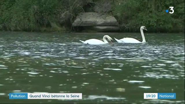 Pollution : quand le groupe Vinci bétonne la Seine
