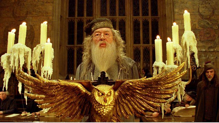 "Extrait de ""Harry Potter et la Coupe de feu"", de Mike Newell (2005). (WARNER BROS. / HEYDAY FILM / AFP)"