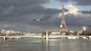Vue de la Seine en crue, à Paris, le 26 janvier 2018. (LUDOVIC MARIN / AFP)