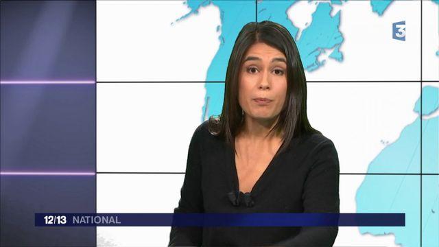 Notre-Dame-des-Landes : ce que révèle le rapport des experts