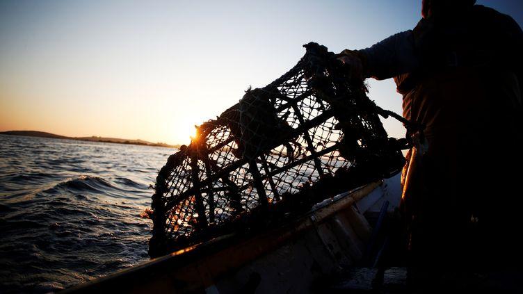 L'accès aux eaux de Guernesey suspendu pour les pêcheurs français en raison du Brexit (illustration). (CHARLY TRIBALLEAU / AFP)