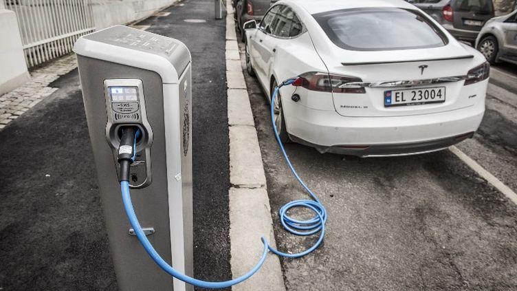 Le gouvernement norvégien favorise les véhicules électriques et a prévu d'interdire définitivement la vente des voitures polluantes en 2025 (illustration).  (TOMAS ONEBORG/SVD / TT NEWS AGENCY / AFP)