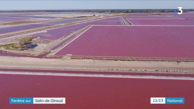 Camargue : le sel à l'honneur à Salin-de-Giraud