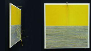 Jesùs Rafael Soto, Vibration jaune, 1965, vu de face et de côté - Centre Pompidou, MNAM-CCI / Georges Merguerditchian / Dist. RMN-GP  (Adagp, Paris 2013)