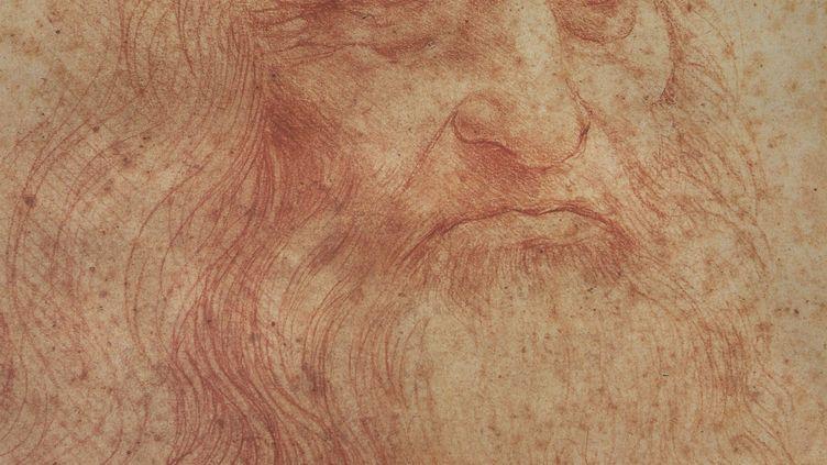 Auto-portrait de Léonard de Vinci, Amboise (A.J.CASSAIGNE / PHOTONONSTOP / AFP)