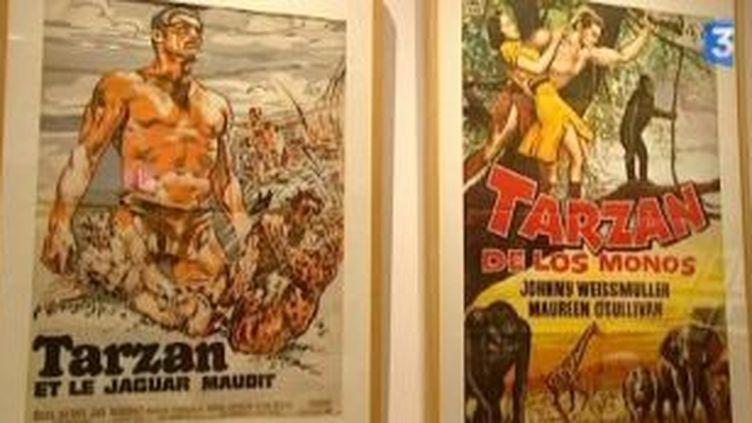 Le mythe de Tarzan décortiqué au Musée du Quai Branly  (Culturebox)