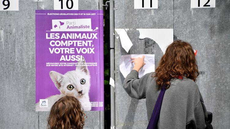 Une affiche du Parti animaliste pour les élections législatives, à Nantes (Loire-Atlantique), le 4 juin 2017. (LOIC VENANCE / AFP)