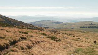 C'est le dernier épisode du voyage au beau milieu des volcans d'Auvergne classés depuis cet été au patrimoine mondial de l'Unesco. Quels sont les derniers trésors qu'ils ont à nous offrir ? Découverte avec des personnes qui travaillent encore dans ces volcans. (FRANCE 2)