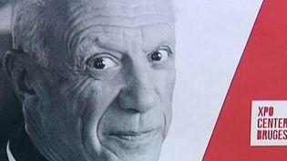 Détail de l'affiche de l'exposition permanente dédiée à l'oeuvre graphique de Picasso  (France 3 / Culturebox / capture d'écran)