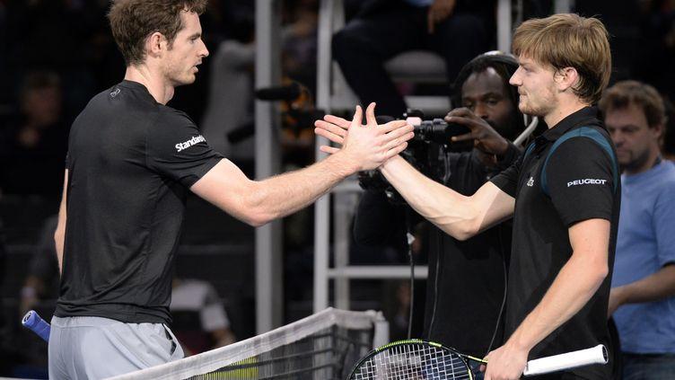 Andy Murray et David Goffin, leaders respectifs de la Grande-Bretagne et de la Belgique (MIGUEL MEDINA / AFP)