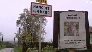 Capture d'écran à l'entrée du villageNançois-le-Grand dans laMeuse (FRANCE 3 LORRAINE / FRANCETV INFO)