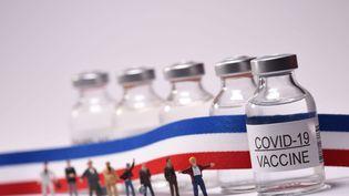 Les plannings des centres de vaccination contre le Covid-19 sont souvent saturés en France, deux mois après le lancement de la campagne. (JEAN-LUC FLÉMAL / MAXPPP)