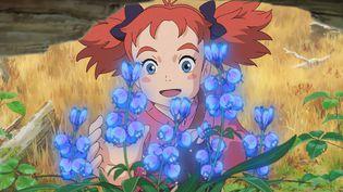 """""""Mary et la fleur de la sorcière"""" de Hiromasa Yonebayashi  (Ponoc)"""