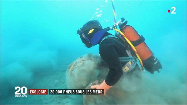 Écologie : 20 000 pneus sous les mers