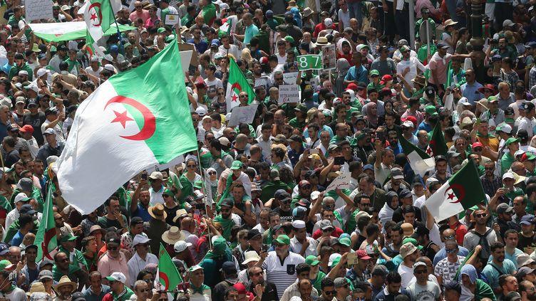 Des manifestants algériensà Alger, le 5 juillet 2019. (BILLEL BENSALEM / APP / MAXPPP)