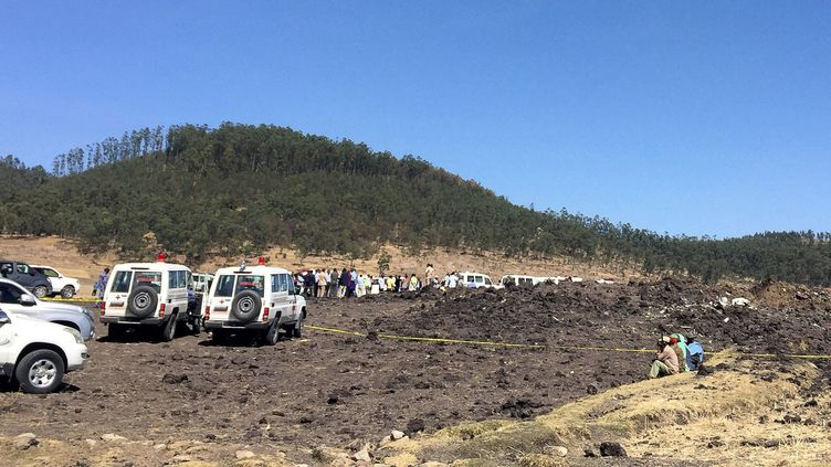 Le site du crash d'un avion de la compagnie Ethiopian Airlines, près de Bishoftu, en Ethiopie, le 10 mars 2019. (TIKSA NEGERI / REUTERS)