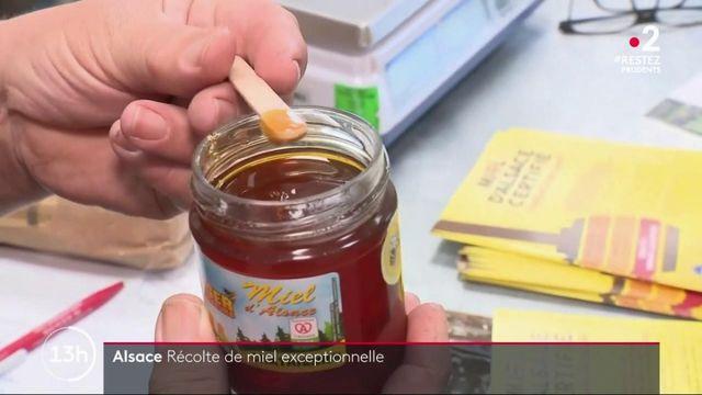 Alsace : vers une récolte exceptionnelle de miel en 2020 ?
