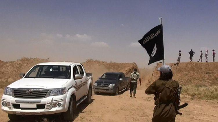 Un militant brandit le drapeau de l'Etat islamique, le 11 juin 2014, le long de la nouvelle route récemment ouverte à la frontière irako-syrienne. (ALBARAKA NEWS / HO / AFP)