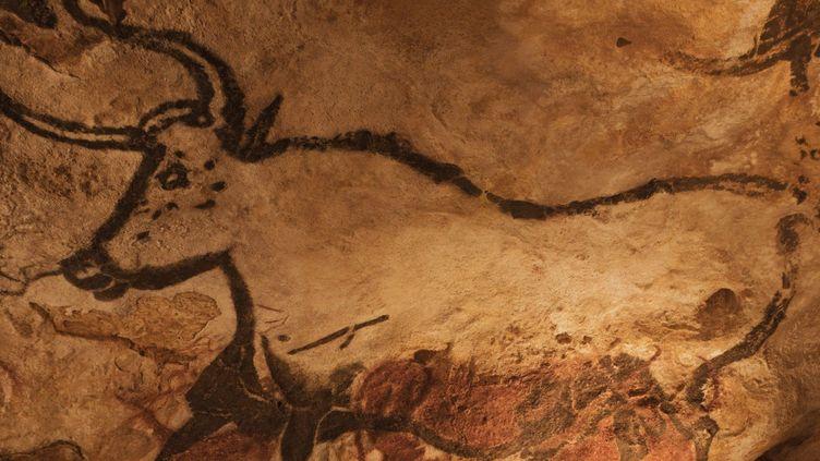Dans la grotte de Lascaux  (SUDRES JEAN-DANIEL / HEMIS.FR)