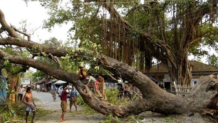 Le 14 avril 2010 : des vents de 120 km/h ont détruit des habitations et arraché des arbres en Inde et au Bangladesh. (AFP)