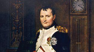 Napoléon 1er par David en 1804 (détail)  (MARY EVANS/SIPA)