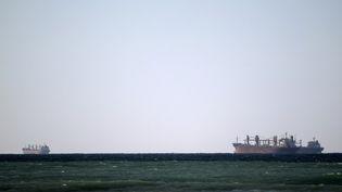 Des tankers transportent du pétrole dans le détroit d'Ormuz (Iran), le 15 janvier 2012. (MARWAN NAAMANI / AFP)